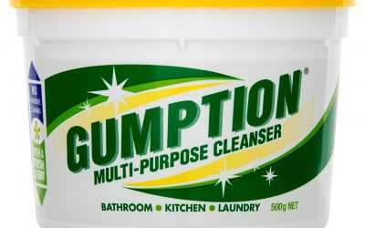 Using Gumption While Pregnant